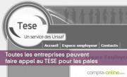 Toutes les entreprises peuvent faire appel au TESE pour les paies