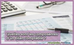Quelles sont les composantes d'un bilan comptable ?