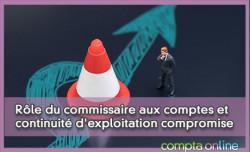 Rôle du commissaire aux comptes et continuité d'exploitation compromise