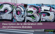 Description de la déclaration 2035 des professions libérales