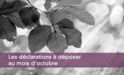 Les déclarations à déposer au mois d'octobre