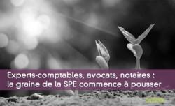 Experts-comptables, avocats, notaires : la graine de la SPE commence à pousser