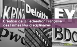 Création de la Fédération Française des Firmes Pluridisciplinaires
