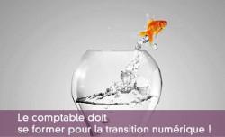 Comptable et transition numérique