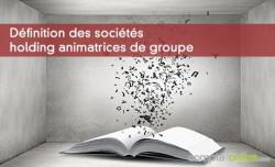 Définition des sociétés holding animatrices de groupe