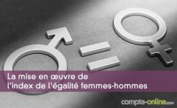 La mise en ½uvre de l'index de l'égalité femmes-hommes