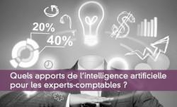 Quels apports de l'intelligence artificielle pour les experts-comptables ?