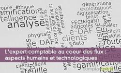 L'expert-comptable au coeur des flux : aspects humains et technologiques