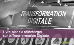 Livre blanc à télécharger sur la Transformation Digitale