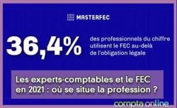 Les experts-comptables et le FEC en 2021 : où se situe la profession ?