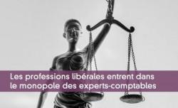 Les professions libérales entrent dans  le monopole des experts-comptables