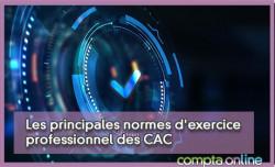 Les principales normes d'exercice professionnel des CAC et leur élaboration