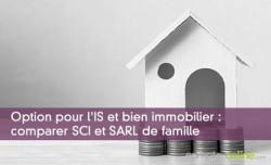Option pour l'IS et bien immobilier : comparer SCI et SARL de famille