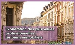 Exonération des plus-values professionnelles : les biens immobiliers