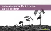 Un incubateur au féminin lancé par un des Big4