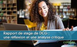 Rapport de stage de DCG : une réflexion et une analyse critique