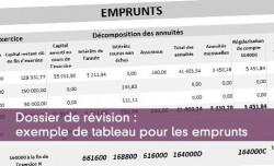 Dossier de révision : exemple de tableau pour les emprunts