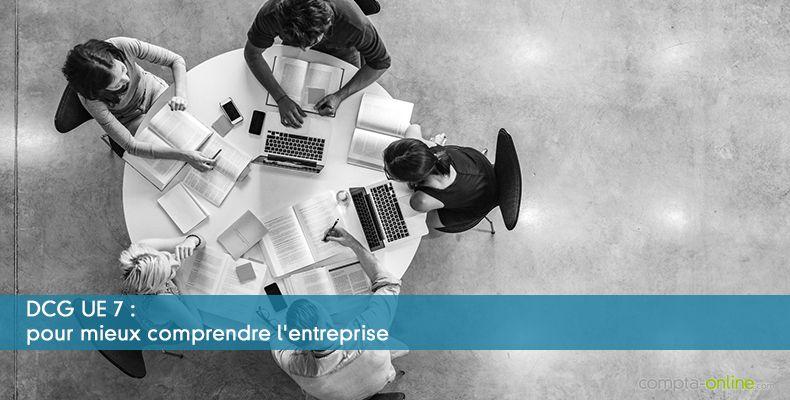 DCG UE7 : pour mieux comprendre l'entreprise