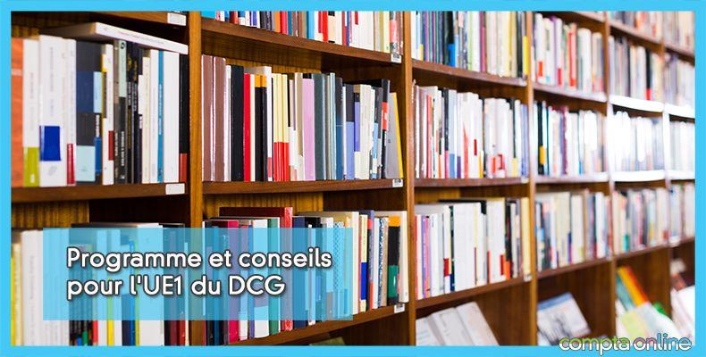 DCG Fondamentaux du droit