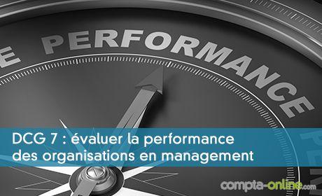DCG UE7 : évaluer la performance des organisations