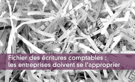 Fichier des écritures comptables : les entreprises doivent se l'approprier
