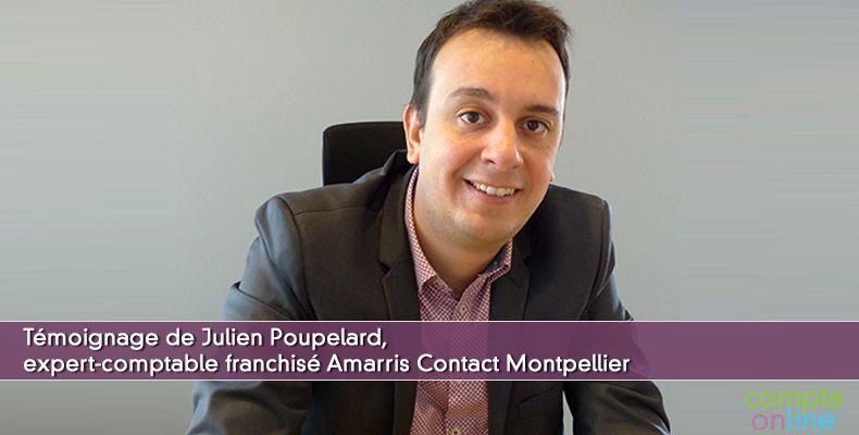 Julien Poupelard Amarris Contact