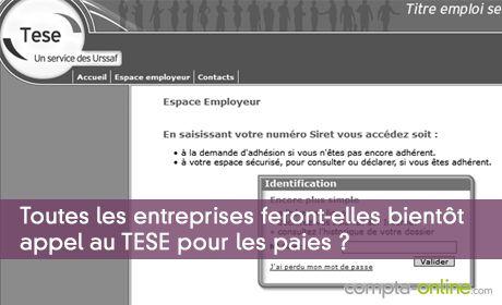 Toutes les entreprises feront-elles bientôt appel au TESE pour les paies ?