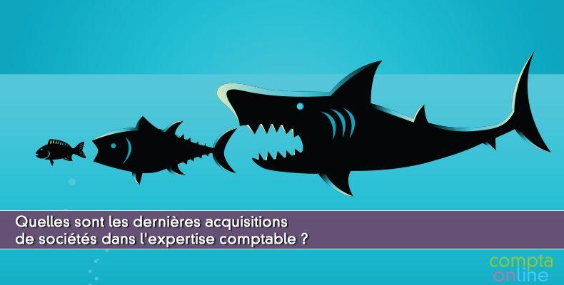 Quelles sont les dernières acquisitions de sociétés dans l'expertise comptable ?
