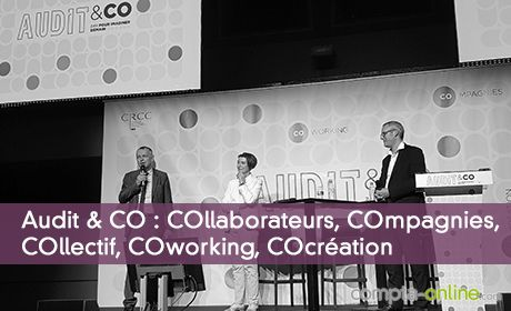 Audit & CO : COllaborateurs, COmpagnies, COllectif, COworking, COcréation