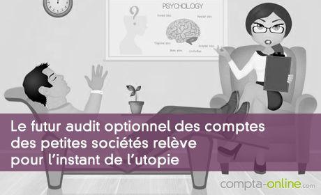 Le futur audit optionnel des comptes des petites sociétés relève pour l'instant de l'utopie