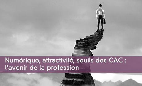 Numérique, attractivité, seuils des CAC : l'avenir de la profession