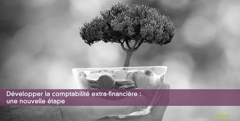 Développer la comptabilité extra-financière : une nouvelle étape