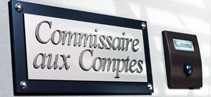 Les examens d'aptitude aux fonctions de commissaires aux comptes en 2015