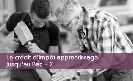 Le Credit D Impot Apprentissage Calcul Et Comptabilisation