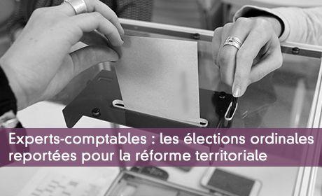 Experts-comptables : les élections ordinales reportées pour la réforme territoriale