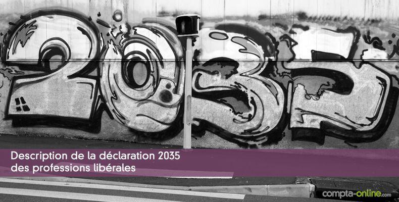 La Declaration 2035 Des Professions Liberales Et Ses Annexes