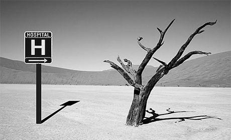 Une forêt de mesures face aux déserts médicaux