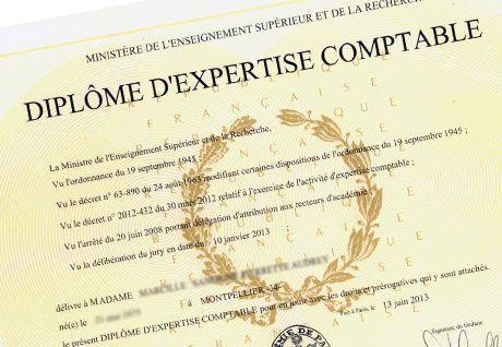 Préparer les épreuves écrites du diplôme d'expertise comptable