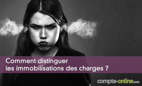 Charges ou immobilisations en comptabilité : comment choisir ?