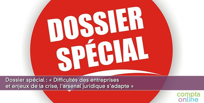 Dossier spécial : « Difficultés des entreprises et enjeux de la crise, l'arsenal juridique s'adapte »