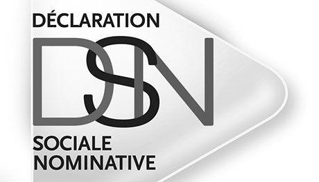 La Déclaration Sociale Nominative en bref