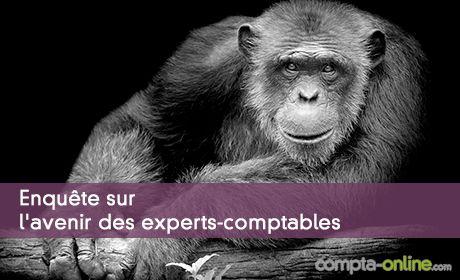 Enquête Denjean & Associés et Compta Online sur l'avenir des experts-comptables