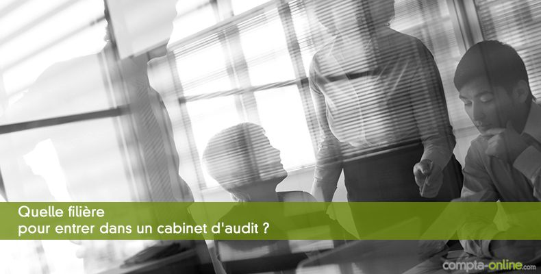 Recrutement les fili res choisies par les cabinets d 39 audit et mixtes - Cabinet d audit toulouse ...