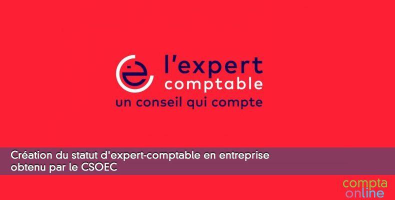 Création du statut d'expert-comptable en entreprise obtenu par le CSOEC