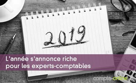 L'année s'annonce riche pour les experts-comptables et les commissaires aux comptes