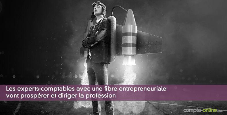 Les experts-comptables avec une fibre entrepreneuriale vont prospérer et diriger la profession