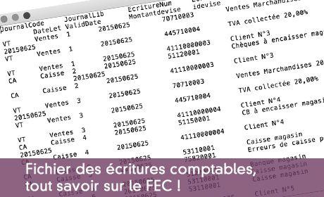 Fichier des écritures comptables, tout savoir sur le FEC !