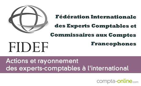 Actions et rayonnement des experts-comptables à l'international