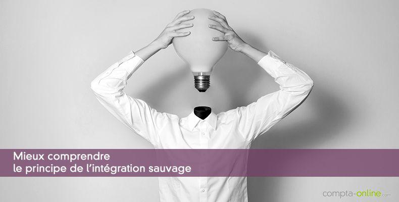 Mieux comprendre  le principe de l'intégration sauvage