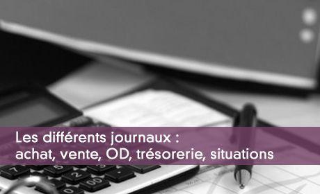 Les différents journaux : achat, vente, OD, trésorerie, situations